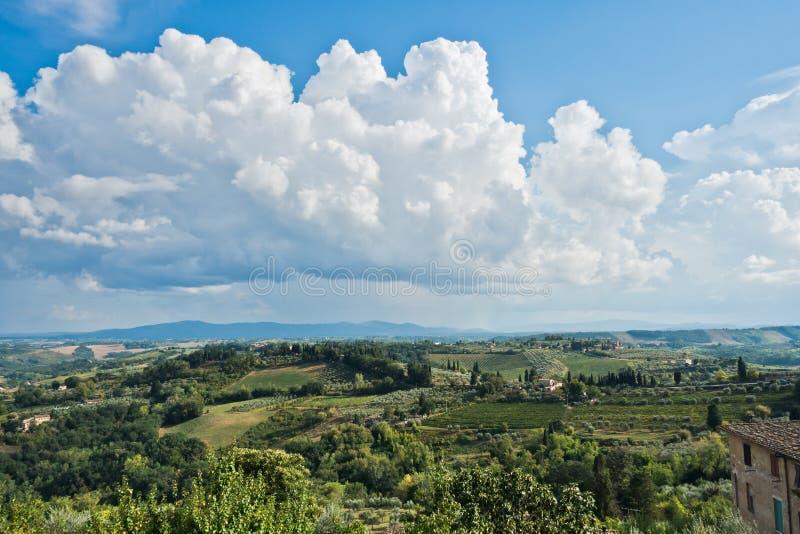 在的全景小山、葡萄园、橄榄和柏树,在圣吉米尼亚诺附近的托斯卡纳风景 免版税库存图片