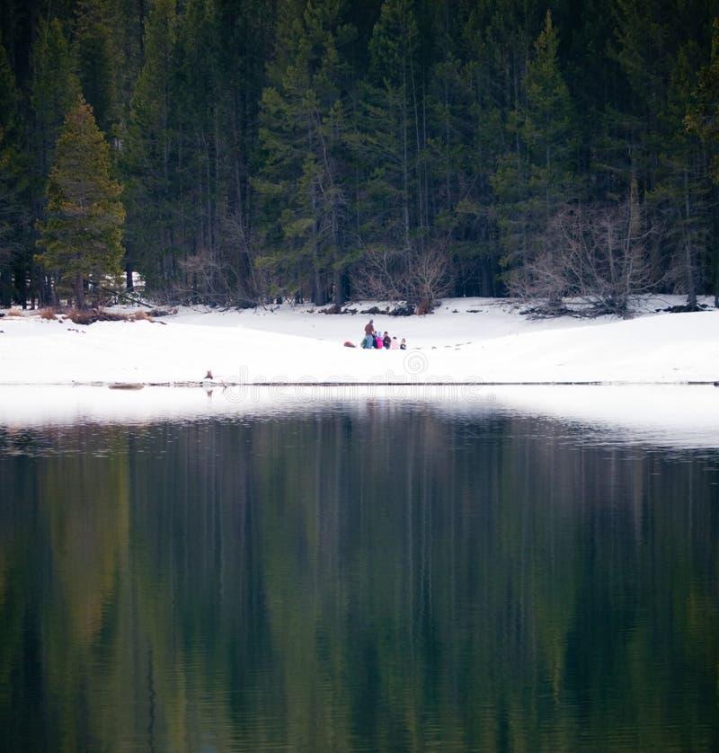 在的冬天picknick湖岸 免版税库存照片