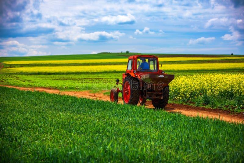 在的拖拉机农业领域和剧烈的云彩 库存图片