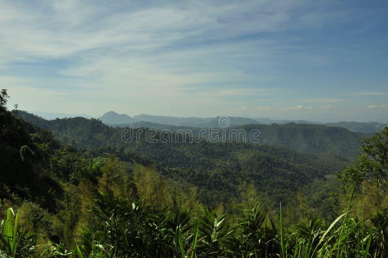在的泰国风景与新鲜的绿色草甸 库存照片