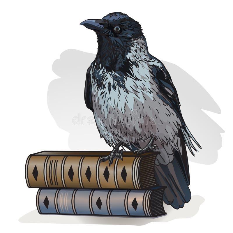 在的灰色乌鸦在白色背景的书 r 向量例证