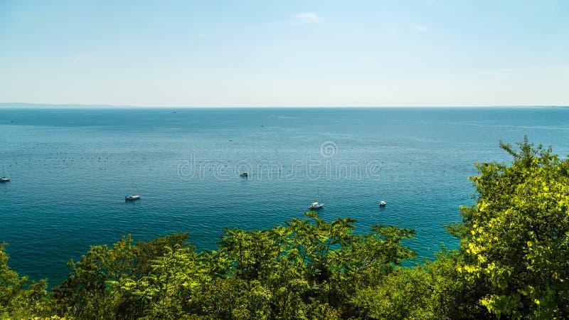 在的里雅斯特海湾的夏天  免版税库存图片