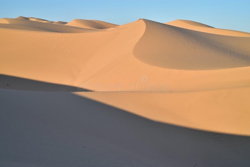 在皇家沙丘消遣地区的沙丘,加利福尼亚 免版税库存照片