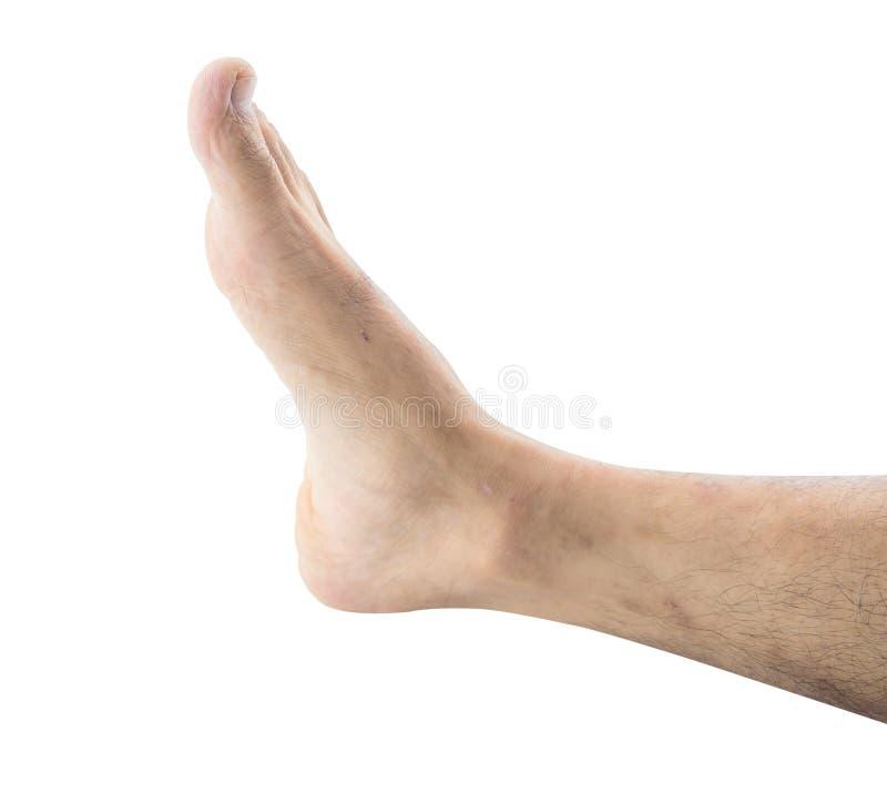 在皮肤腿的伤疤 免版税图库摄影