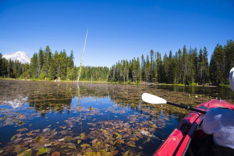在皮船的活跃休闲在有荷花和s的Trillium湖 库存图片