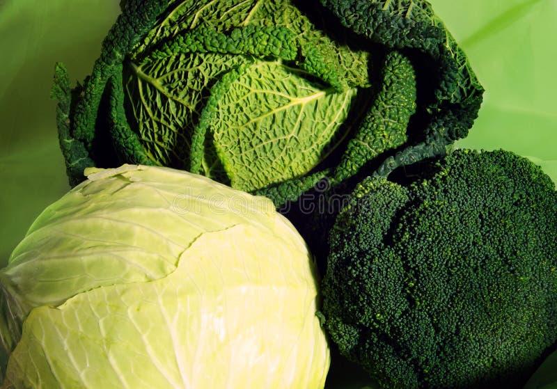 在皱叶甘蓝和硬花甘蓝,三个不同种类旁边的白椰菜在一图片