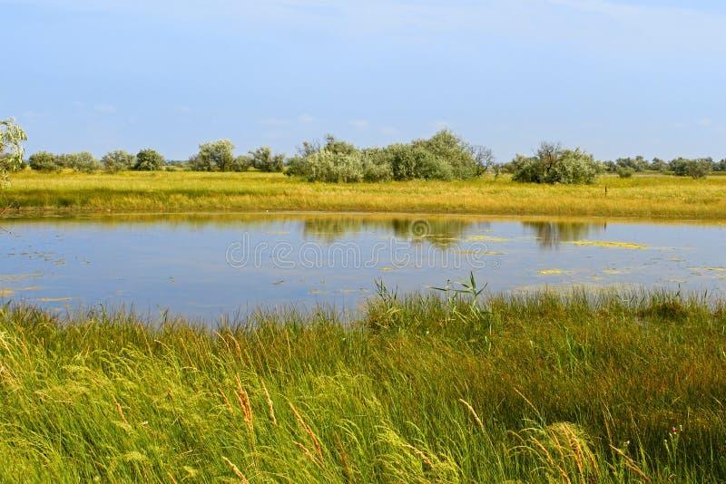 在盐海运附近的湖 免版税库存照片
