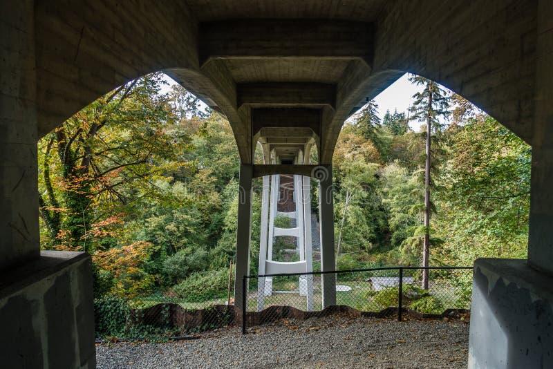 在盐水公园4的桥梁 库存图片