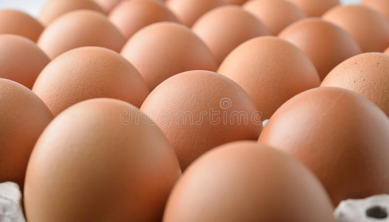 在盘区鸡蛋的鸡鸡蛋 库存照片