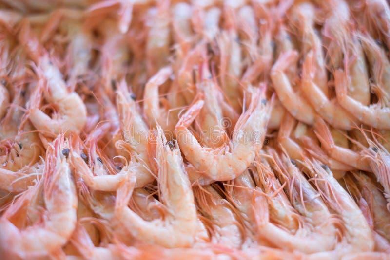 在盘子的大虾 免版税库存图片