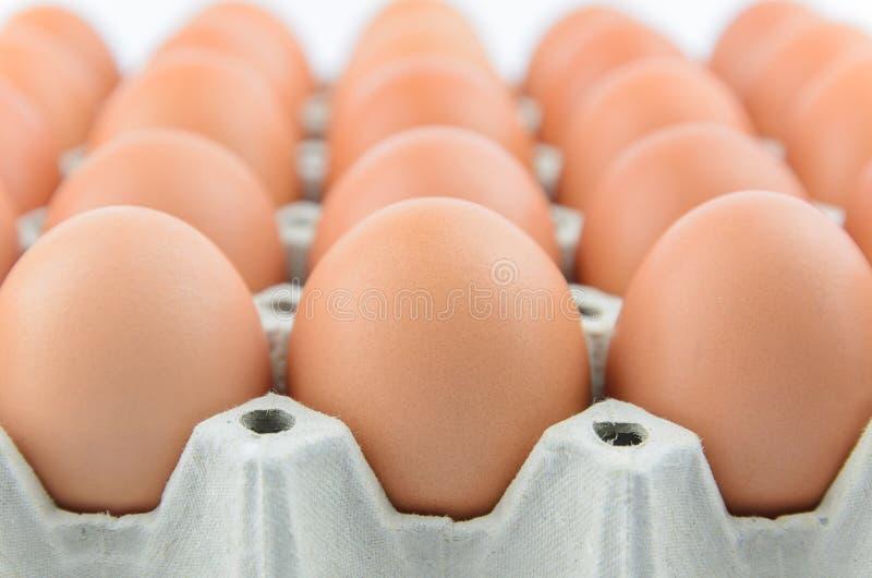 在盘子的鸡蛋 免版税图库摄影