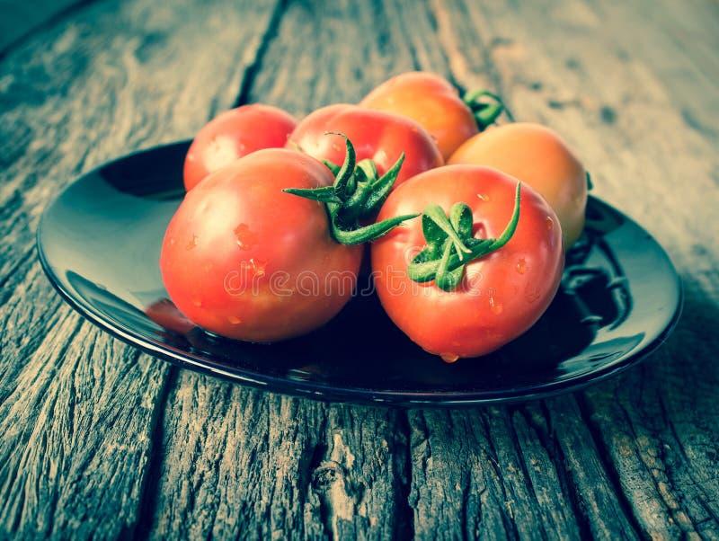 在盘的蕃茄 免版税库存图片