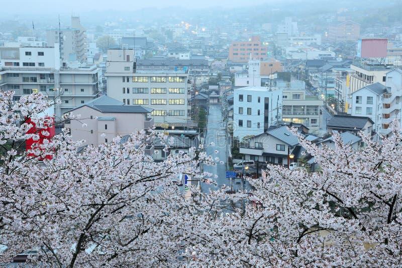 在盛开的浪漫樱桃树在Tsuyama市 图库摄影