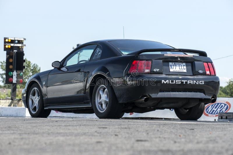 在直线的Ford Mustang 库存照片