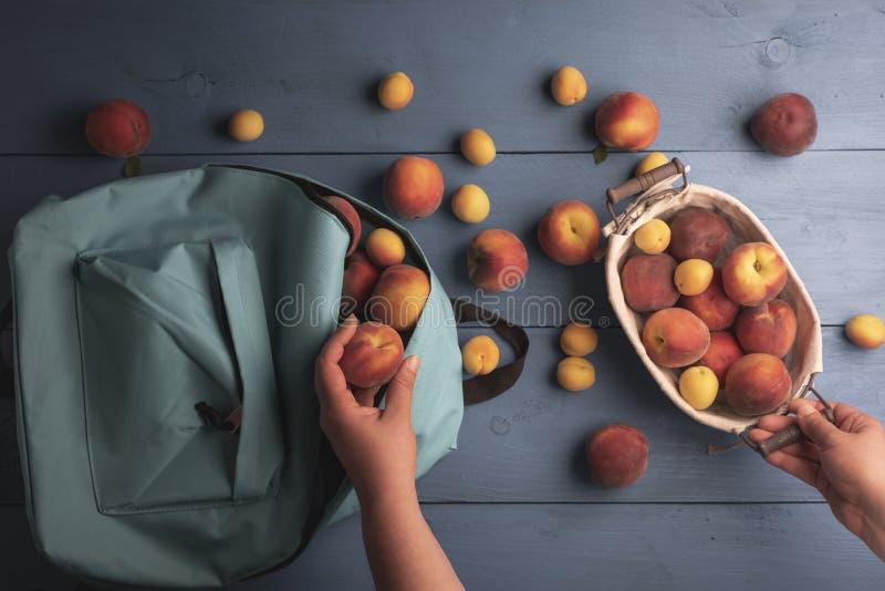 在看法上的亲手选的果子 桃子和杏子 免版税库存图片