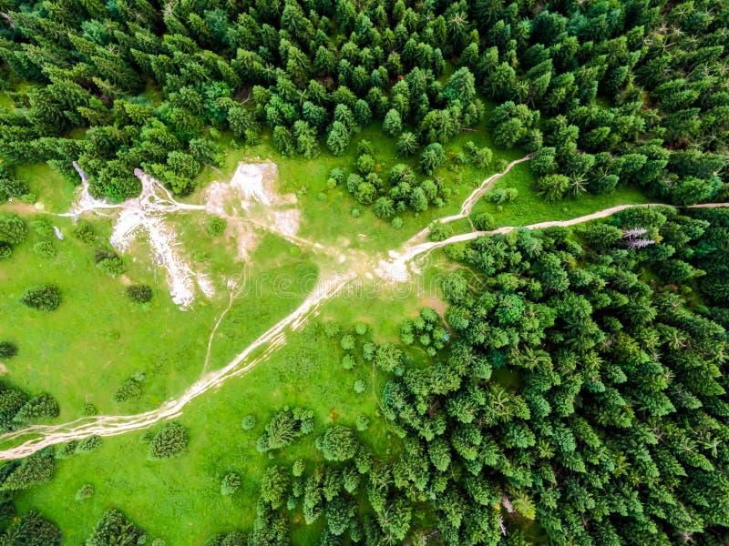 在看法下的空中上面对森林、树和旅游道路在斯洛伐克国立公园马拉山Fatra 充满活力的颜色,新自然和 免版税库存图片