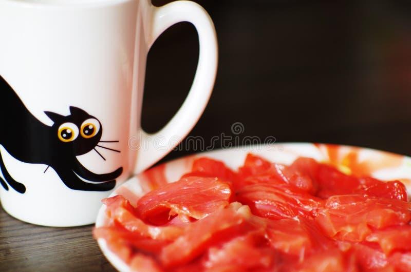 在真正的肉旁边的被绘的猫 库存照片