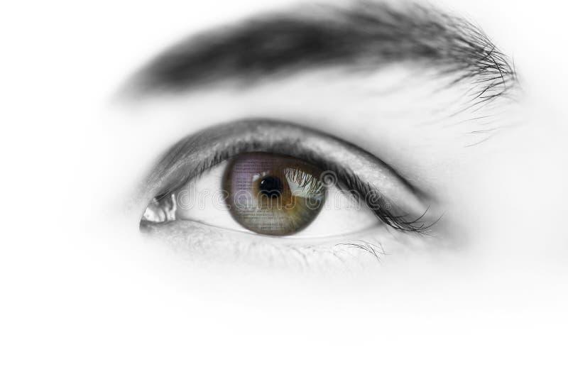 在眼睛反映的计算机程序语言 库存例证