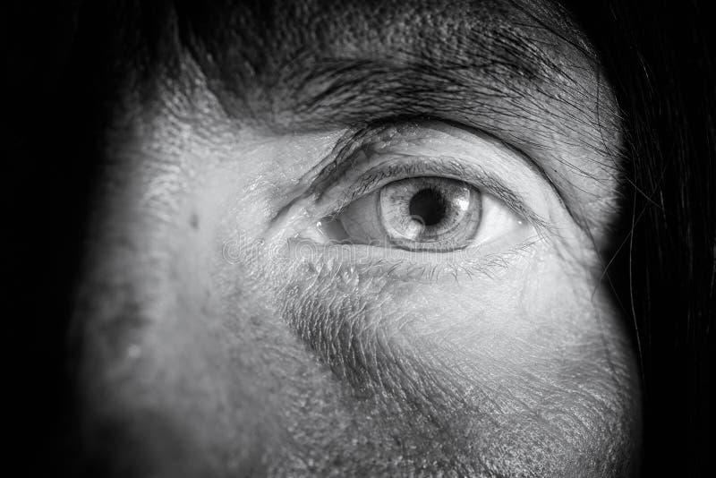 在眼睛的隐形眼镜 库存图片
