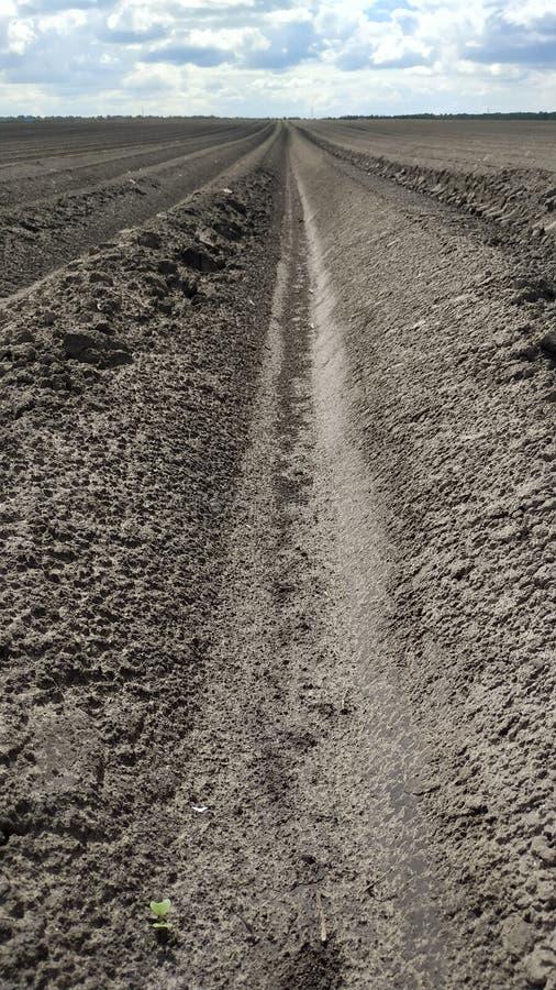 在着陆下的犁沟在一个新近地被犁的领域 r 库存照片
