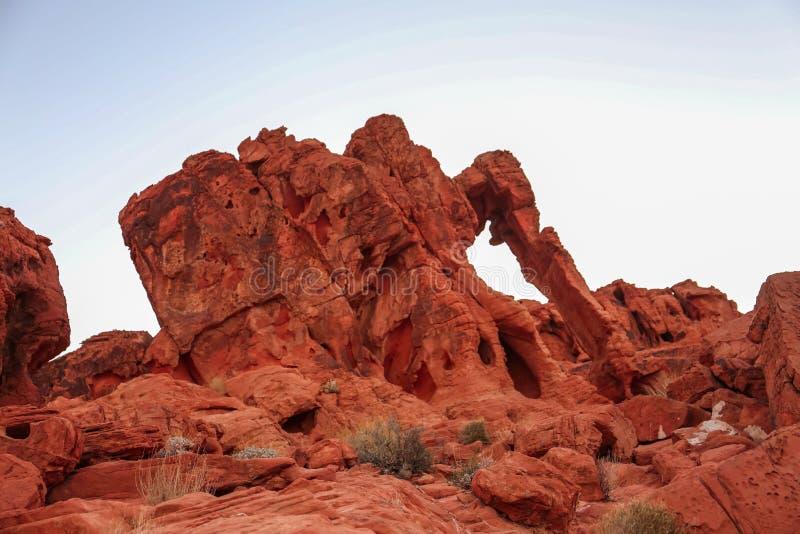 在石头的大象由风雕刻了 库存照片