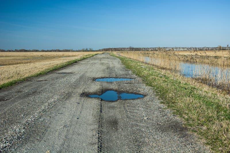 在石渣路的水坑 免版税库存图片