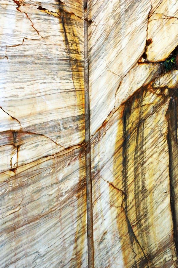 在石猎物的大理石墙壁细节 库存照片