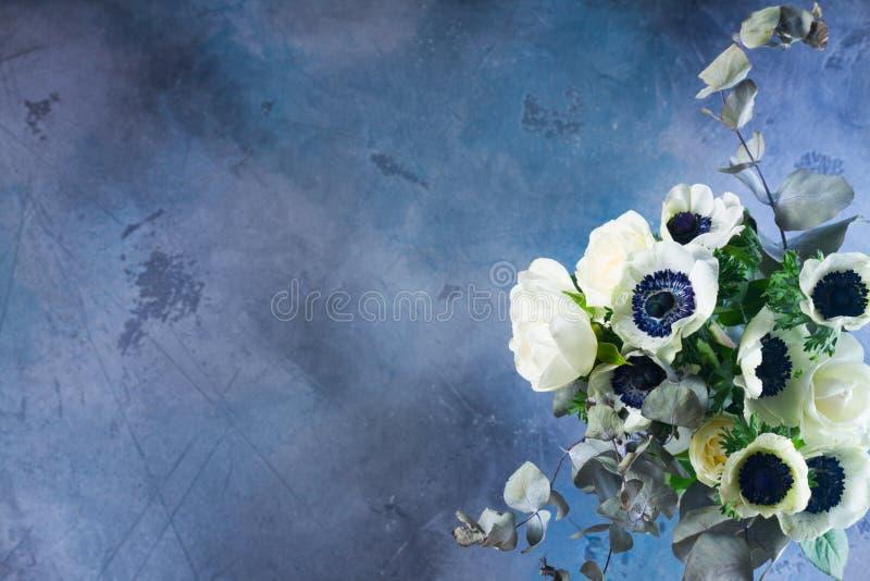 在石背景的银莲花属花 图库摄影