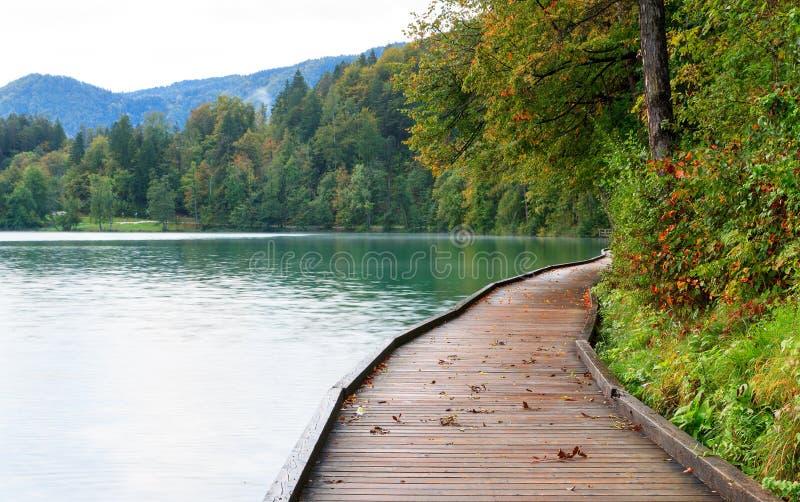 在码头旁边的美丽的流血的湖 免版税库存照片
