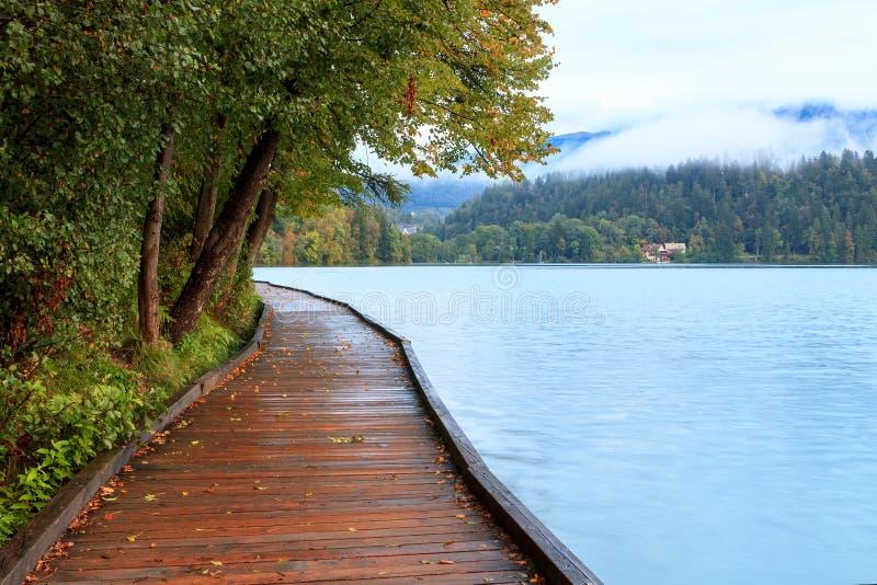 在码头旁边的美丽的流血的湖 库存照片