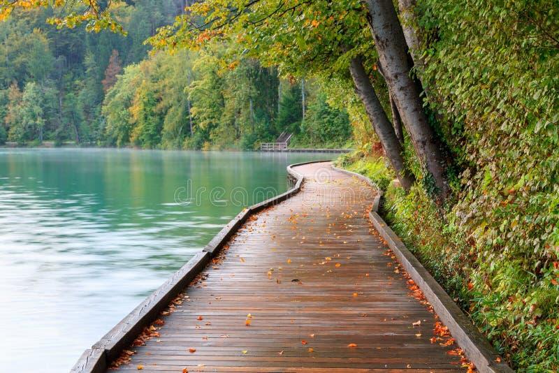 在码头旁边的美丽的流血的湖 免版税图库摄影