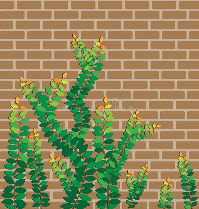 在砖墙上的绿色叶子 皇族释放例证