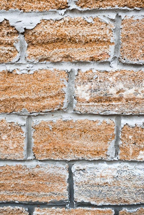 在砖墙的看法 免版税库存照片