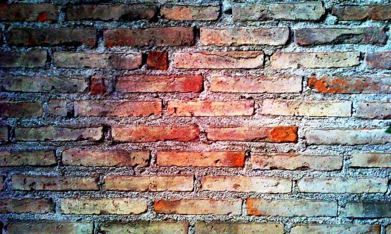 在砖的砖 库存图片