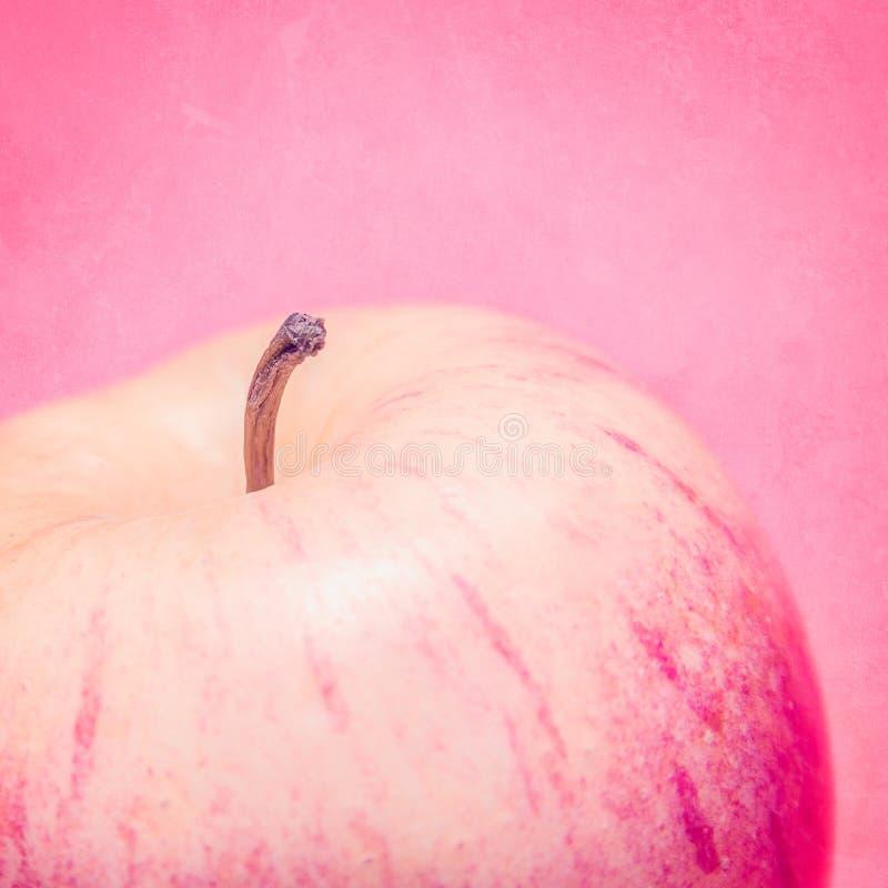 在破旧的桃红色背景的红色苹果 库存照片