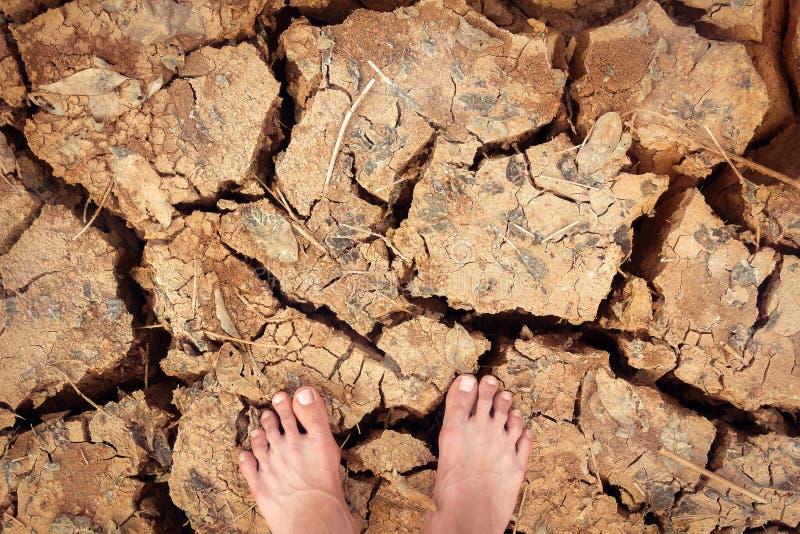 在破裂的干陆的脚立场没有水的颜色作用 库存照片