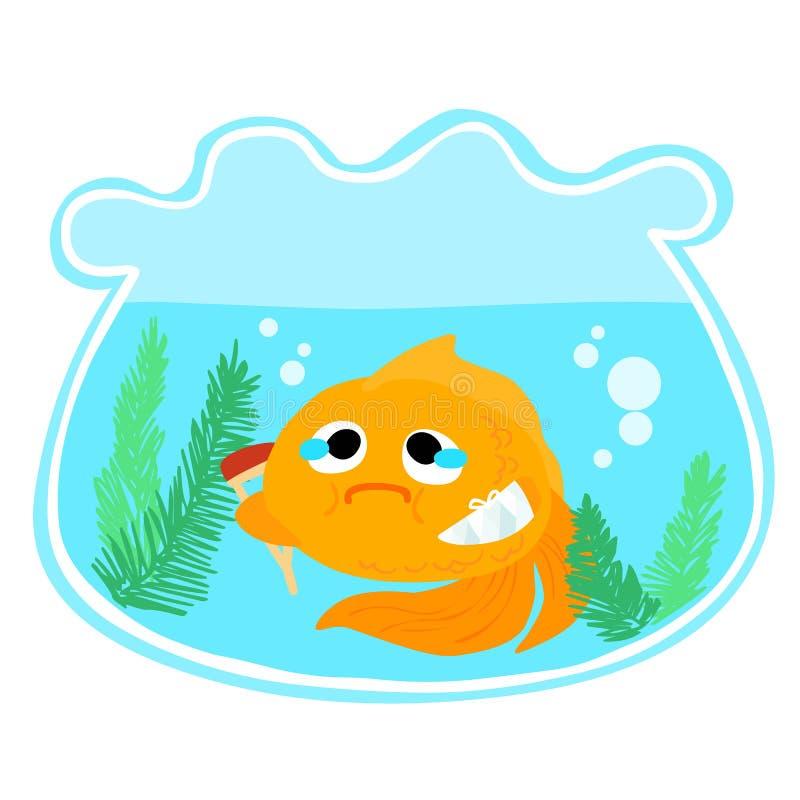 在碗例证的金鱼伤害 皇族释放例证
