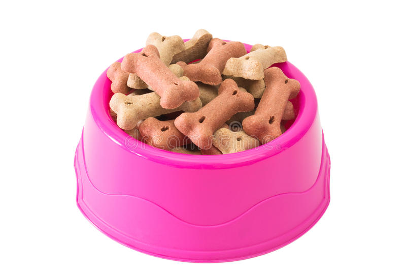在碗的喂狗的硬饼干 免版税图库摄影