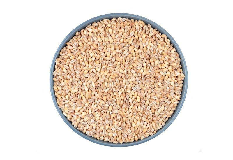 在碗的大麦沙粒 库存图片