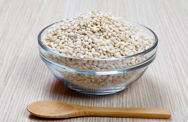 在碗的大麦 免版税库存照片