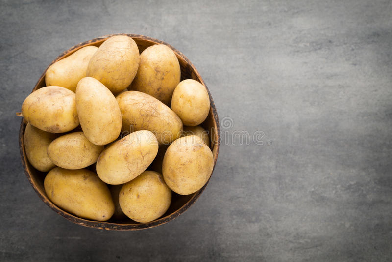 在碗的嫩土豆土豆,灰色背景 免版税库存照片