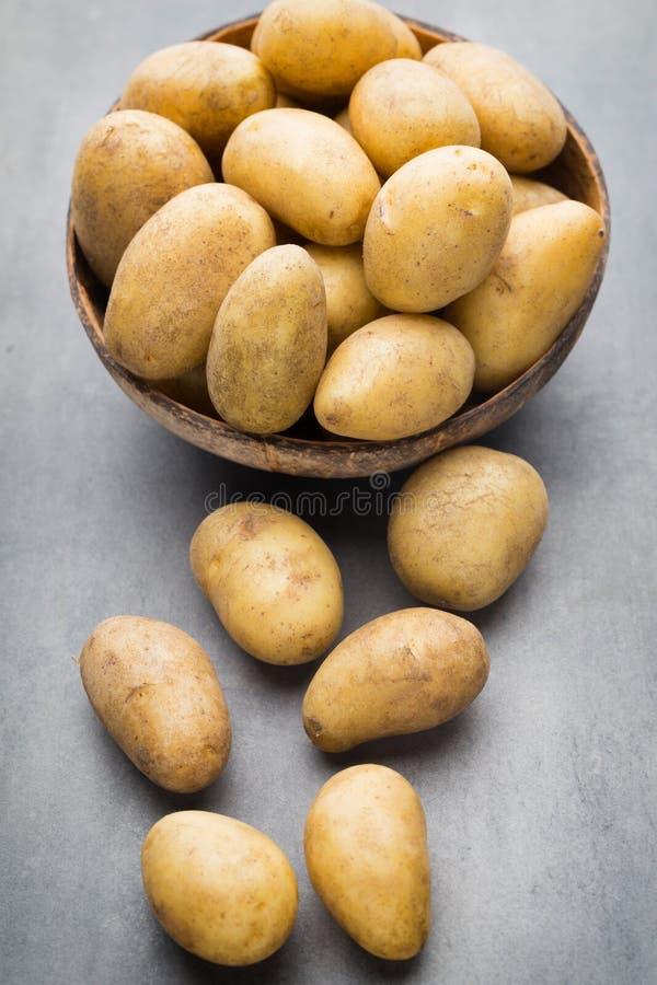 在碗的嫩土豆土豆,灰色背景 库存图片