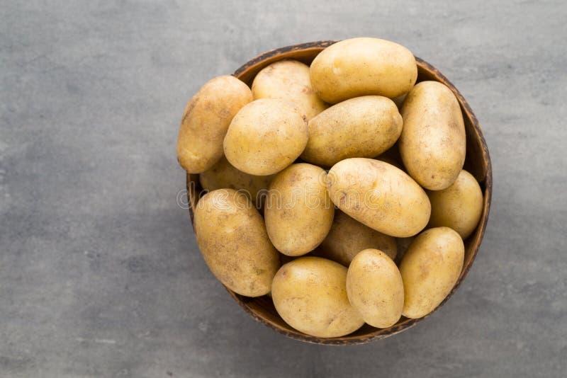 在碗的嫩土豆土豆,灰色背景 库存照片