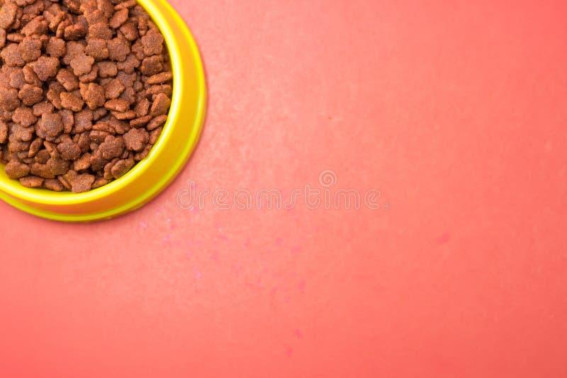 在碗的干食物在红色背景的宠物的 免版税库存图片
