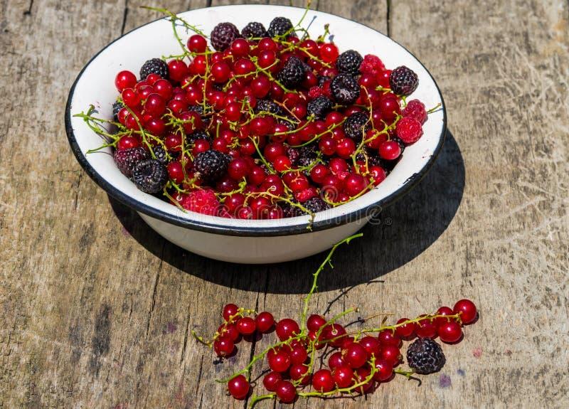 在碗的新鲜的五颜六色的莓果在土气木桌上 库存照片