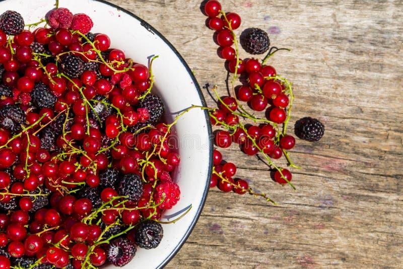 在碗的新鲜的五颜六色的莓果在土气木桌上 免版税图库摄影