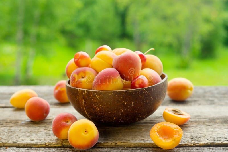 在碗的新鲜的杏子在木桌上有绿色背景 免版税库存图片