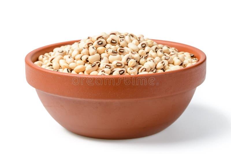 在碗的未煮过的白色母牛豌豆豆 免版税库存照片