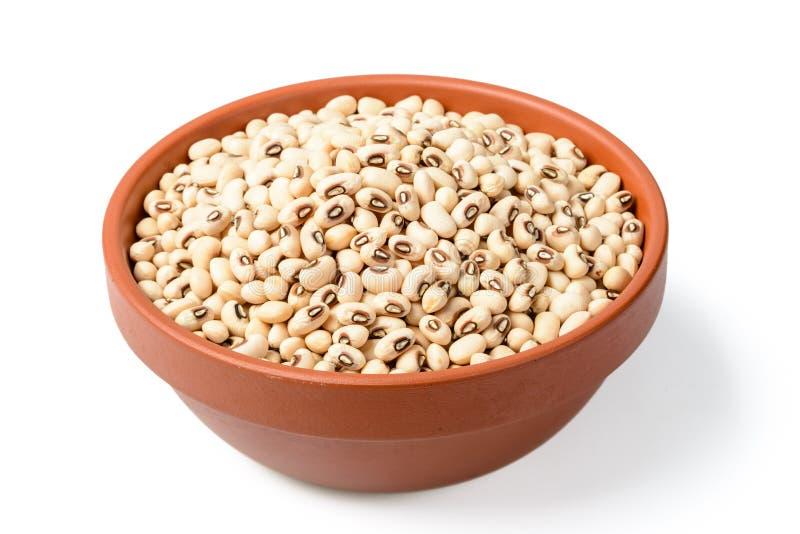 在碗的未煮过的白色母牛豌豆豆 库存照片