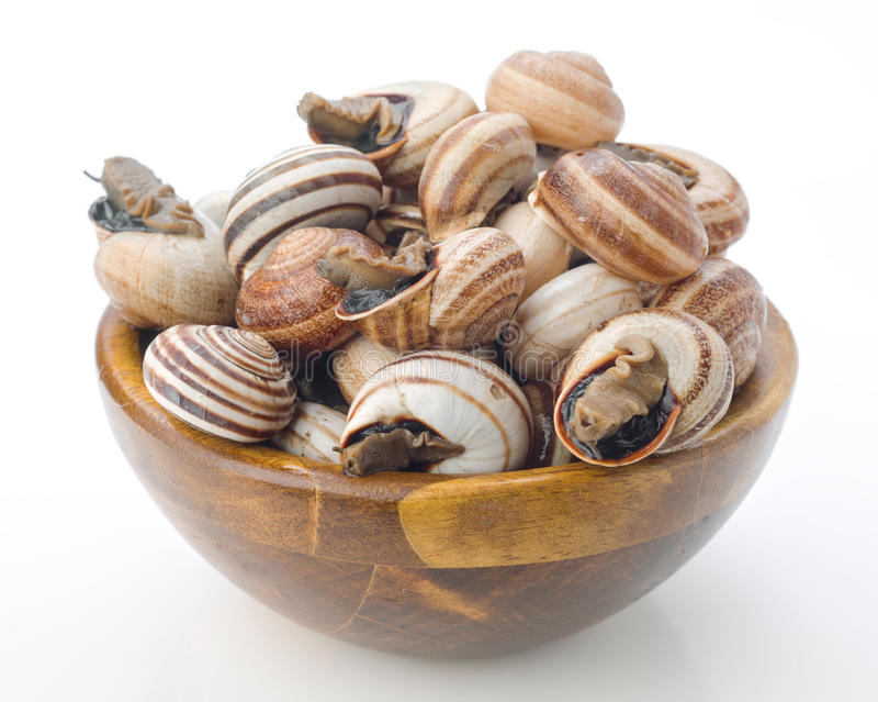 在碗的未煮过的escargot 免版税库存照片